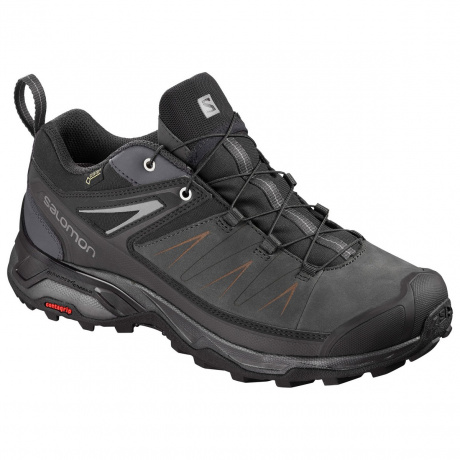 Кроссовки Salomon X ULTRA 3 LTR GTX® | Phantom/Magnet/Quiet Shade | Вид 1