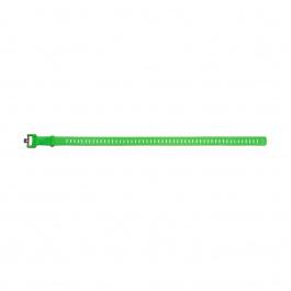 Ремень для лыж Black Diamond SKI STRAP 25in | Envy Green | Вид 1